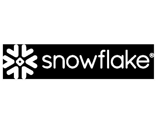 Snowflake - Partner Infotopics
