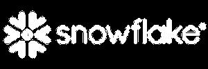 Snowflake 300-100
